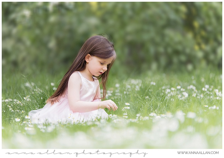 Anna Allan Photography picking daisies spring shoot